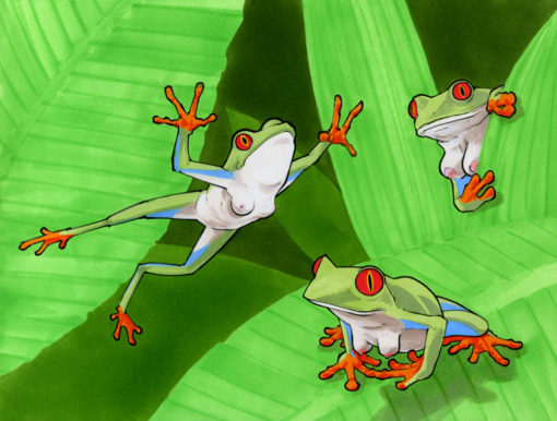 Frogs with Tits I